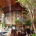 Climatizador Evaporativo para Restaurante