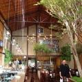Climatizaçao Restaurante